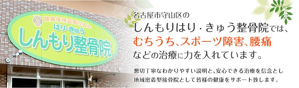 名古屋市守山区のしんもりはり・きゅう整骨院では、むちうち、スポーツ障害、腰痛などの治療に力を入れています。